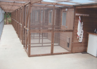 Interior view of the boarding chalets at Radmore Farm Cattery